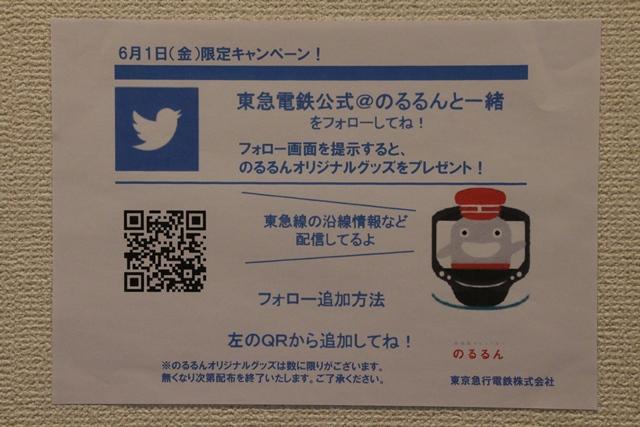 IMG_7509.JPG